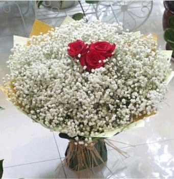 满天星花束生日送花