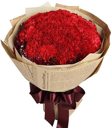 红色康乃馨花语