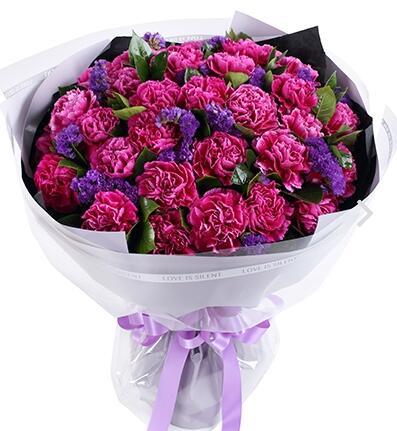 紫红色康乃馨花语