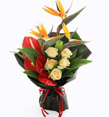 送给长辈的花